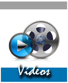 LOGO INCIAL VIDEOS